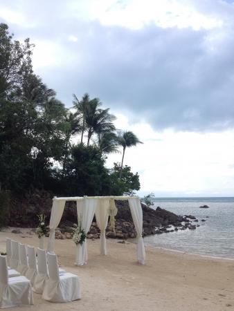 boda en la playa: Niza boda en la playa estableci�