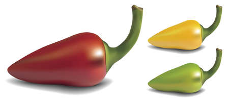 Realistic red, yellow and green vector pepper on white background