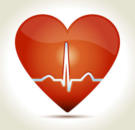 Glossy red heart with normal EKG sinus rhythm and shadow on light background  Vector
