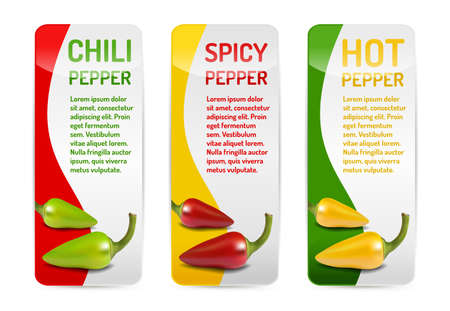 Red green and yellow Chili pepper banner collection with reflection and shadow on white background. Isolated vector.