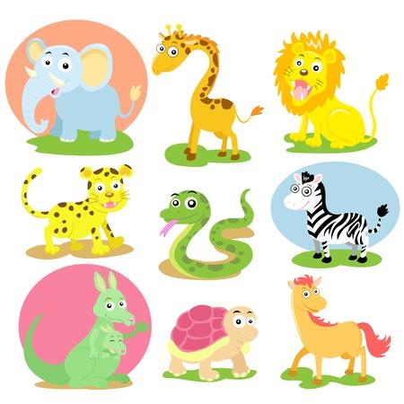 animal cartoon set photo