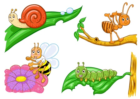 set of illusion insect cartoon