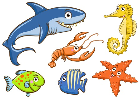 aquatic animals in the sea photo