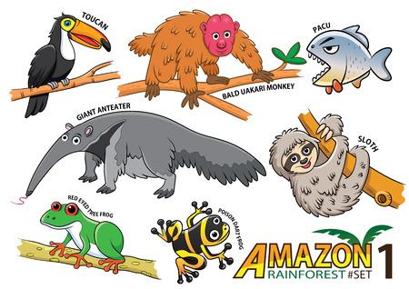 animales del bosque: Conjunto de animales de dibujos animados lindo y aves en las zonas amazónicas de América del Sur sobre fondo blanco. mono calvo uakari, pacú, el oso hormiguero gigante, la pereza, la rana de ojos rojos, ranas venenosas, tucán