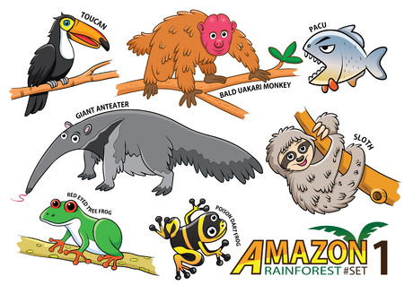 Set of Cute cartoon Animals and birds in the Amazon areas of South America isolated on white background. bald uakari monkey, pacu, giant anteater, sloth, red eye frog , poison dart frog, toucan