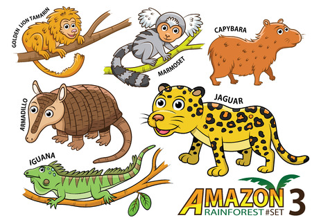 Set of Cute cartoon Animals and birds in the Amazon areas of South America isolated on white background. golden lion tamarin, marmoset, capybara, armadillo, jaguar, iguana, lizard Vettoriali