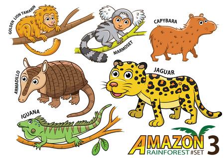 Set van leuke cartoon dieren en vogels in het Amazone-gebied van Zuid-Amerika op een witte achtergrond. Gouden Leeuw Tamarin, marmoset, capybara, gordeldier, jaguar, leguaan, hagedis Vector Illustratie