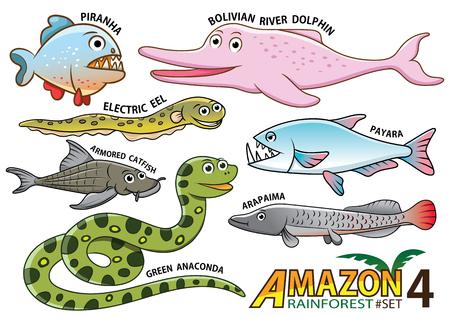 Set van leuke cartoon dieren en vogels in het Amazone-gebied van Zuid-Amerika op een witte achtergrond. piranha, boliviaans rivier dolfijn, elektrische paling, payara, gepantserde meerval, anaconda, arapaima Vector Illustratie