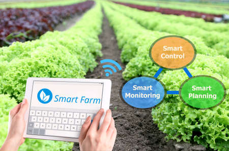 Smart farming, Hi-Tech Agriculture 4.0 concept photo