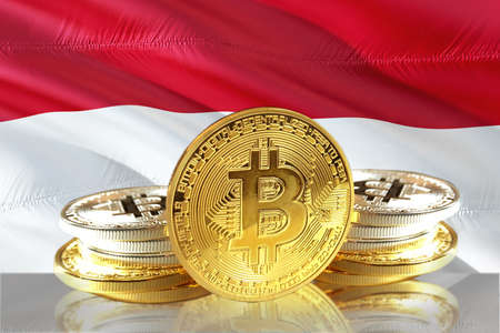 Bitcoin coins on Indonesias Flag, Cryptocurrency, Digital money concept photo