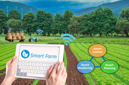 Smart farming 4.0 , Hi-Tech Agriculture conceptual,  AI automatic 版權商用圖片