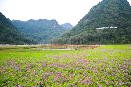 Bac Son Flower Valley or Thung Lung Hoa Bac son in Vietnamese, Lang Son, Vietnam