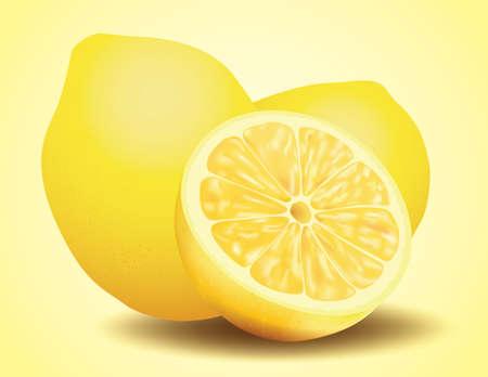 Fresh Lemon, Sliced and Whole Fruit, Realistic Vector illustration Stockfoto