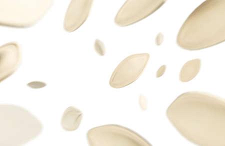 Flying Roasted Pumpkin bean, 3D Rendering illustration.