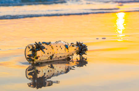 Old Glass Bottle Lies On Beach at Sunset Фото со стока