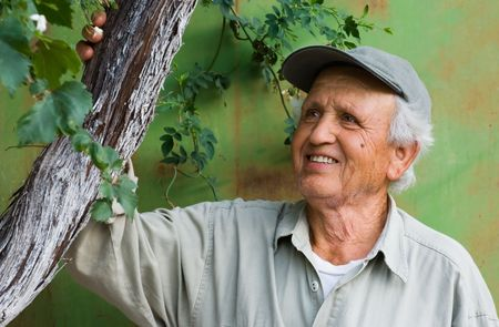 Image shows a happy senior person looking at an old tree branch
