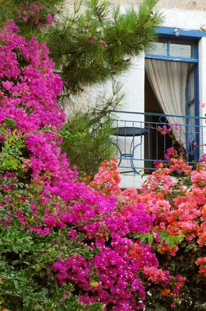 Picture shows a balcony from a traditional Greek house with colorful flowers underneath