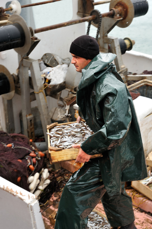 Young fisherman, on board a trawler boat and  under rainy weather, carrying a wooden box full of small fish