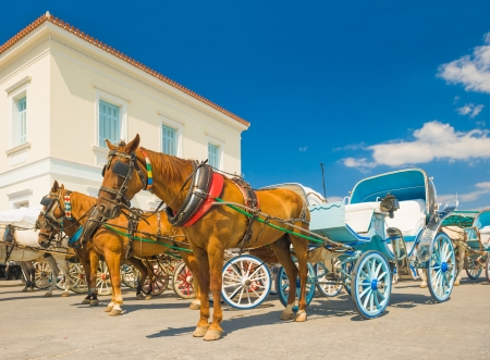 Horse drawn carts, used as taxis on the Greek island of Spetses, waiting for customers Stock Photo - 15356658