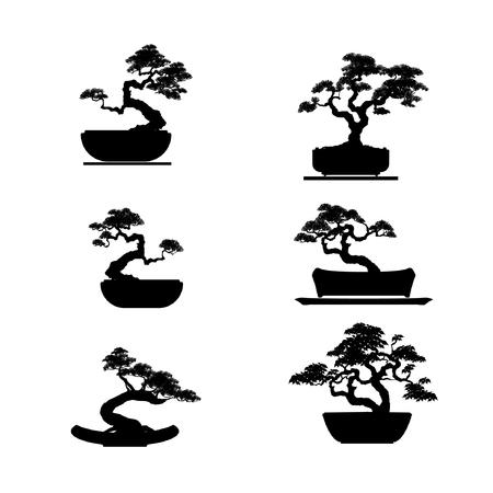 Bonsai boom. Zwart silhouet van bonsai. Gedetailleerd beeld. Vector illustratie