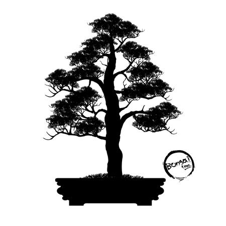 Japanese hawthorn bonsai in bloom. Black silhouette of bonsai. Detailed image illustration. Stock Illustratie