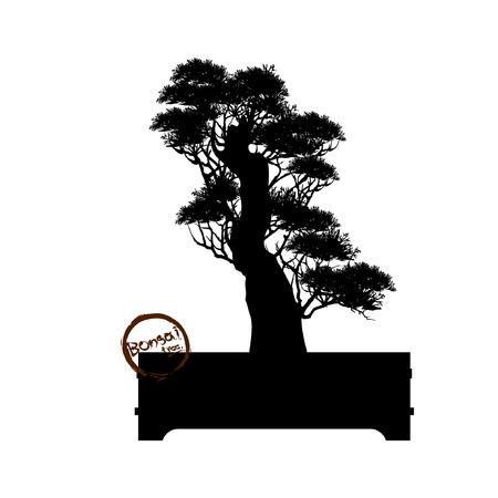 Japanese hawthorn bonsai in bloom  Black silhouette of bonsai. Detailed image. Vector illustration