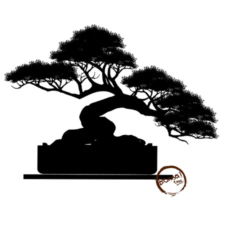 Bonsai tree, Black silhouette of bonsai, Detailed image, Vector illustration,