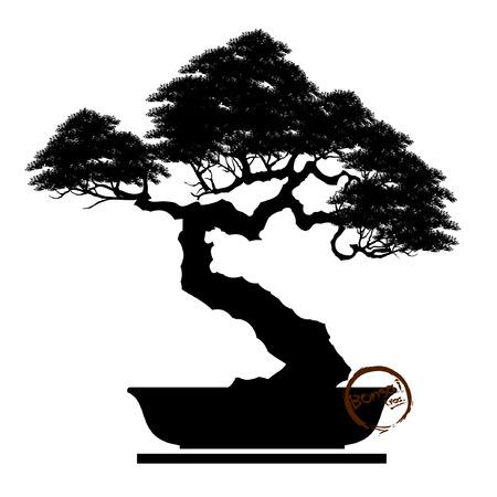 Black silhouette of bonsai Vector illustration, Banco de Imagens - 92660975