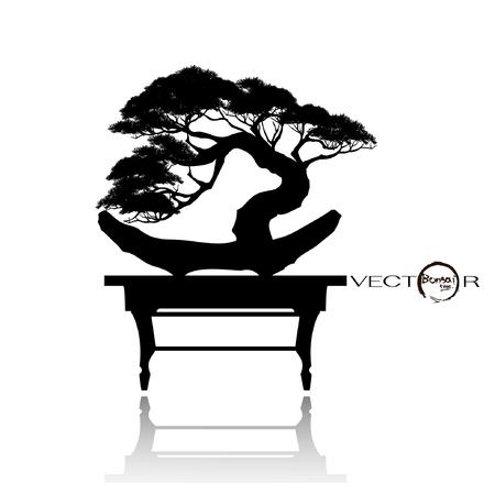 Japanse meidoorn bonsai in bloei, zwart silhouet van bonsai. Gedetailleerd beeld. Vector illustratie Stockfoto - 95687409