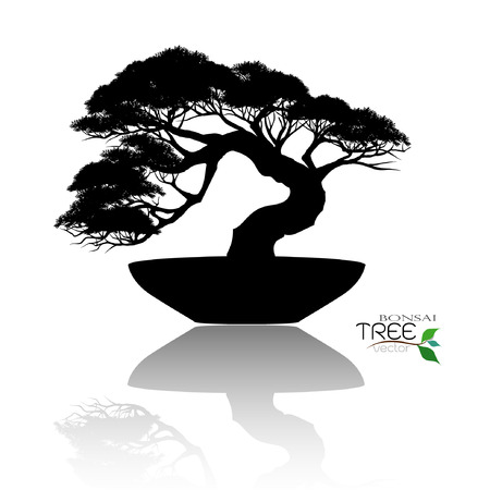 Japanese hawthorn bonsai in bloom, black silhouette of bonsai. Detailed image. Vector illustration. Stok Fotoğraf - 95814222
