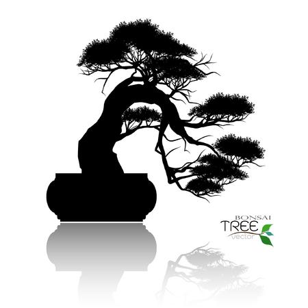 Japanse meidoorn bonsai in bloei, zwart silhouet van bonsai. Gedetailleerd beeld. Vector illustratie Stockfoto - 95814224
