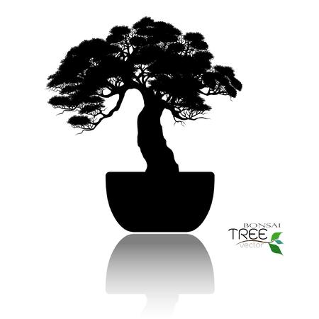 Japanese hawthorn bonsai in bloom, black silhouette of bonsai. Detailed image. Vector illustration.