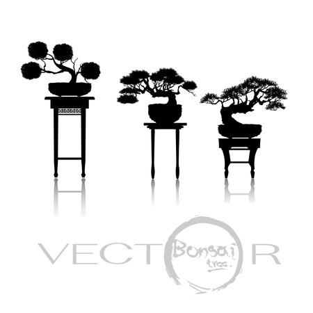 Japanse bonsaiboom, plant silhouet pictogrammen op witte achtergrond, zwart silhouet van bonsai. Gedetailleerd beeld. Vector.