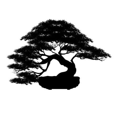 Japanese bonsai tree, plant silhouette icon  on white background, Black silhouette of bonsai. Vector illustration.