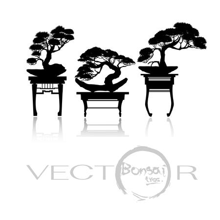 Japanse bonsaiboom, plant silhouet pictogrammen op witte achtergrond, zwart silhouet van bonsai.