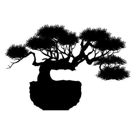 Japanese bonsai tree , plant silhouette icons on white background, Black silhouette of bonsai. Detailed image. Vector Ilustração