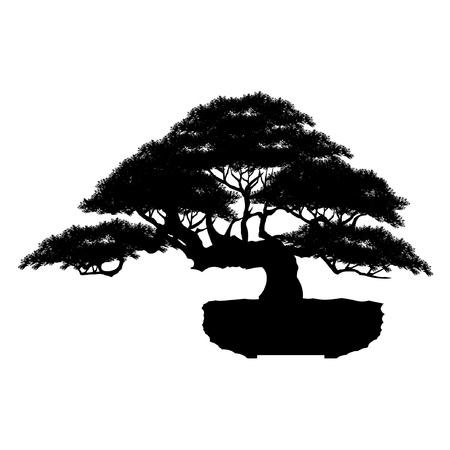 Japanese bonsai tree , plant silhouette icons on white background, Black silhouette of bonsai. Detailed image. Vector Stock Illustratie