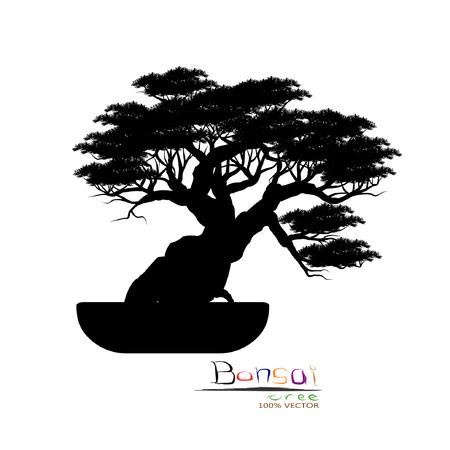 Bonsaiboom, zwart silhouet van bonsai, gedetailleerd beeld