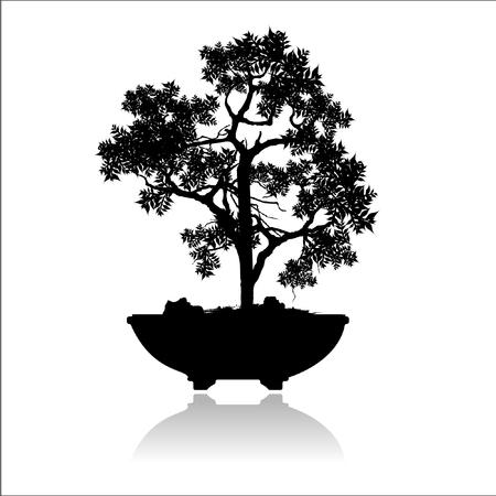 Bonsai silhouette image illustration.  イラスト・ベクター素材