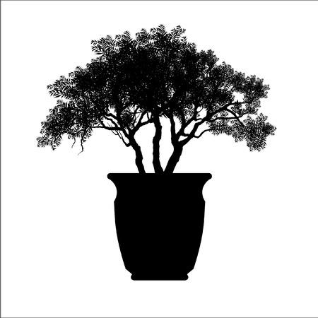 Bonsai silhouette image illustration. Stock Illustratie