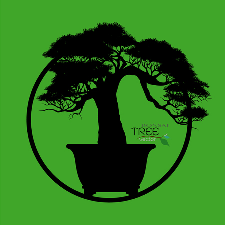 Vector of Bonsai tree.