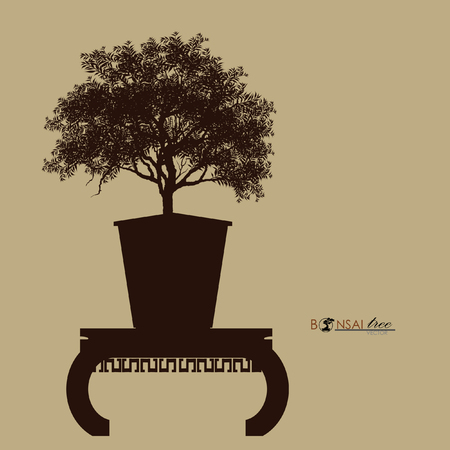 Japanese bonsai tree , plant silhouette icons on white background, Black silhouette of bonsai. Detailed image. Vector Illustration