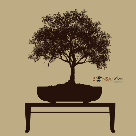 Illustration of Bonsai tree. Stockfoto - 100260504