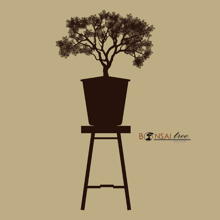 Bonsai tree on the table. Vintage realistic style. Vector illustration. Çizim