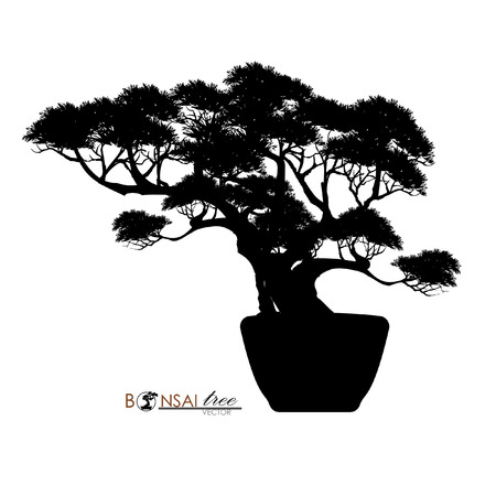 Japanese hawthorn bonsai, silhouette of bonsai. Detailed image, Mini tree, Vector illustration. Dwarf trees for design and website. Mini tree in pot.