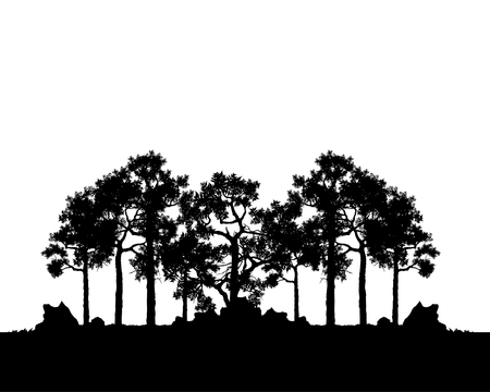 Vector of trees, black silhouette of plant and woods, afar landscape and space for text, isolated illustration. Tree flat icon for apps and websites.