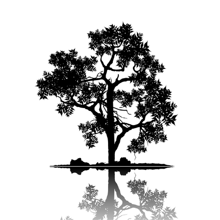Vector of tree, silhouette icons, tree icon for apps and websites.