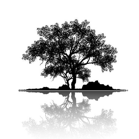 Vektor des Baumes, Schattenbildikonen auf weißem Hintergrund. Baum flaches Symbol für Apps und Websites. Ansicht der natürlichen Landschaft, Illustration.
