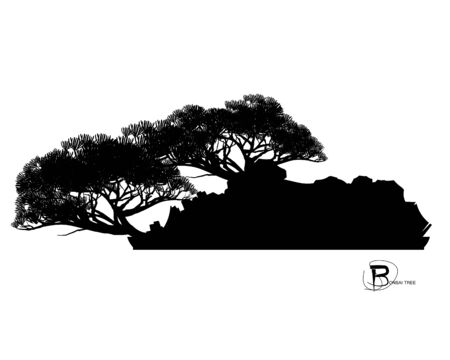 Japanese bonsai tree and stone, Black silhouette of bonsai. Detailed image. Vector Zdjęcie Seryjne - 129155546