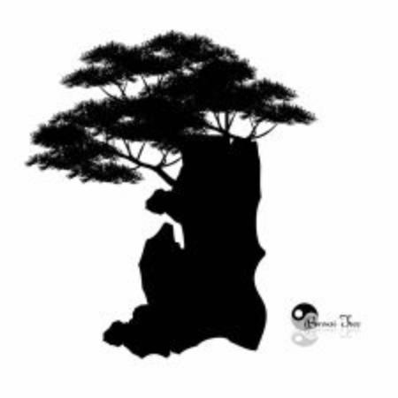 Japanese bonsai tree and stone , Black silhouette of bonsai. Detailed image. Vector Ilustração